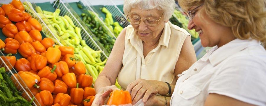 Senior Household Services
